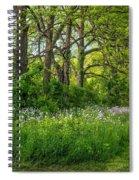 Woodland Phlox   Spiral Notebook