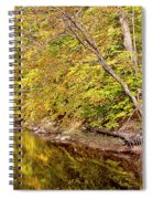 Woodland Stream Early Autumn Montgomery County Pennsylvania Spiral Notebook