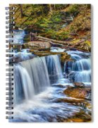 Wateralls In The Woods Spiral Notebook