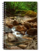 Woodland Waters Spiral Notebook