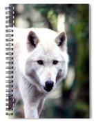 Woodland White Wolf 2 Spiral Notebook