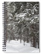 Woods In Winter Spiral Notebook