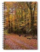 Woods Walk Spiral Notebook