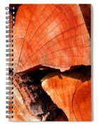 Woodstock Spiral Notebook
