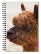Woolly Alpaca Spiral Notebook