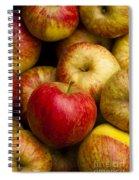 Worcester Pearmain Spiral Notebook