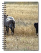 Working Sheep Spiral Notebook
