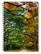 Wormsloe Plantation Spiral Notebook