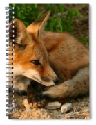Worn Out From Chasing Squirrels Spiral Notebook
