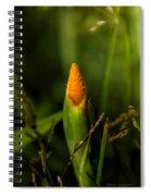 Wound Tight Spiral Notebook