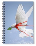 Wounded Peace 2 Spiral Notebook