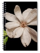 Wounded White Magnolia Wide Version Spiral Notebook