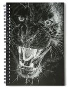 Wrath Spiral Notebook
