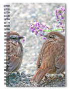 Wren Bird Sweethearts Spiral Notebook