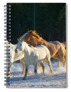 Wyoming Horses Spiral Notebook