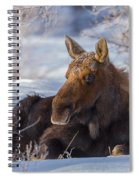 Wyoming Sunbathing Spiral Notebook