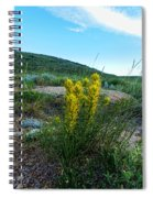 Wyoming Wildflowers Indian Paintflowers Spiral Notebook