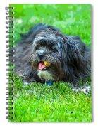 Xena Spiral Notebook