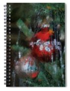Xmas Red Ornament Photo Art 03 Spiral Notebook