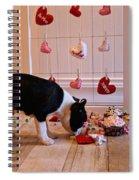 Xoxoxo's Spiral Notebook