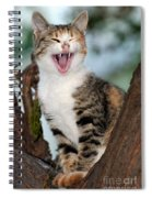 Yawning Cat Spiral Notebook