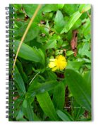 Yellow Accent Spiral Notebook