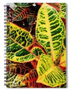 Yellow And Green Croton Spiral Notebook