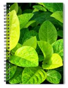 Yellow And Green Leaves Spiral Notebook