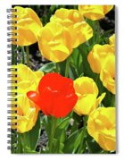 Yellow And One Red Tulip Spiral Notebook