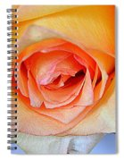 Yellow And Pink Spiral Notebook