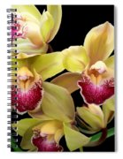 Yellow And Pink Orchids Spiral Notebook