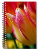 Yellow And Pink Tulips Spiral Notebook