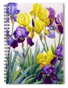 Yellow And Purple Irises Spiral Notebook