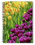 Yellow And Purple Tulips Spiral Notebook