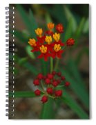 Yellow And Red Flowers Spiral Notebook