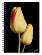 Yellow And Red Tulips  Spiral Notebook