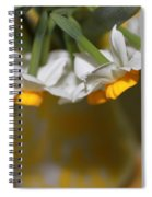 Yellow And White Spiral Notebook
