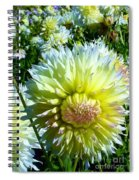 Yellow And White Dahlia Flowers Spiral Notebook