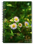 Yellow And White Dasies Spiral Notebook