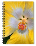 Yellow And White Hibiscus Spiral Notebook