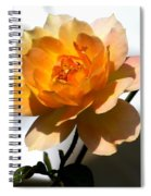Yellow And White Rose Spiral Notebook