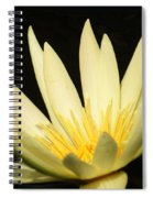 Yellow And Yellow Waterlily...   # Spiral Notebook