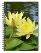 Yellow Artistry Spiral Notebook