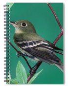 Yellow-bellied Flycatcher Spiral Notebook