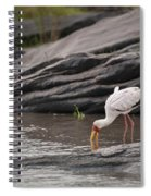 Yellow-billed Stork Fishing In River Spiral Notebook