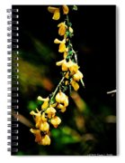 Yellow Blossoms Spiral Notebook