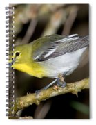 Yellow-breasted Vireo Spiral Notebook