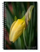 Yellow Bud Spiral Notebook