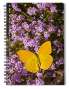 Yellow Butterfly On Pink Flowers Spiral Notebook