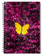 Yellow Butterfly On Red Flowering Bush Spiral Notebook